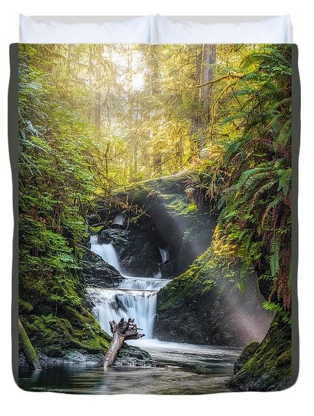 Silk Steps Duvet Cover by James Heckt