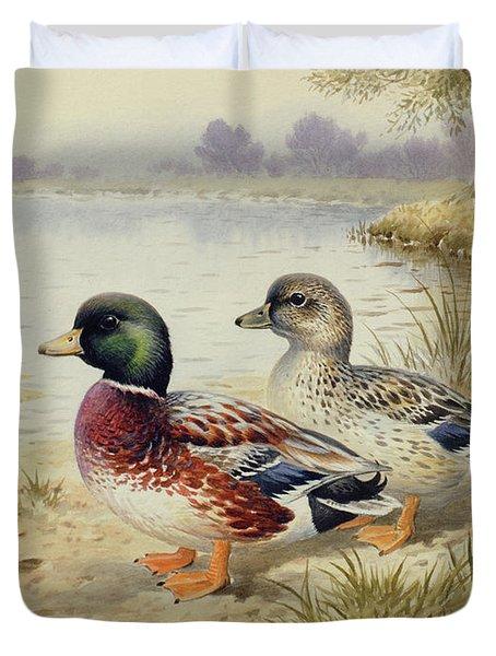Silver Call Ducks Duvet Cover