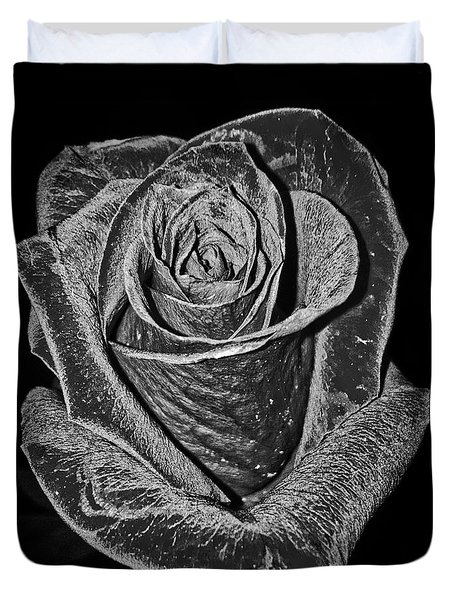 Silver Rose Duvet Cover