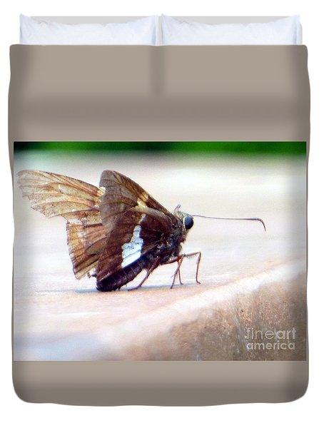 Silver Spotted Skipper Butterfly Duvet Cover