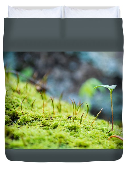 Simple Sprout Duvet Cover by Rhys Arithson
