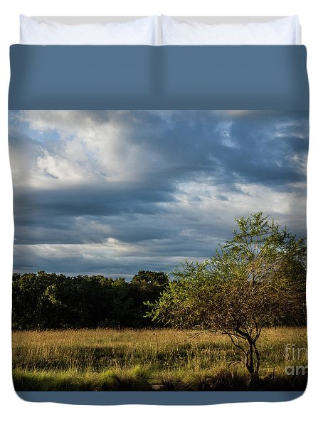 Simplicity Duvet Cover by Iris Greenwell