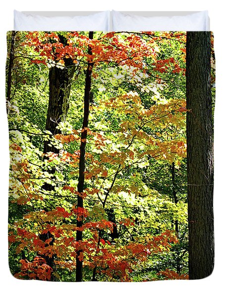 Simply Autumn Duvet Cover by Joan  Minchak