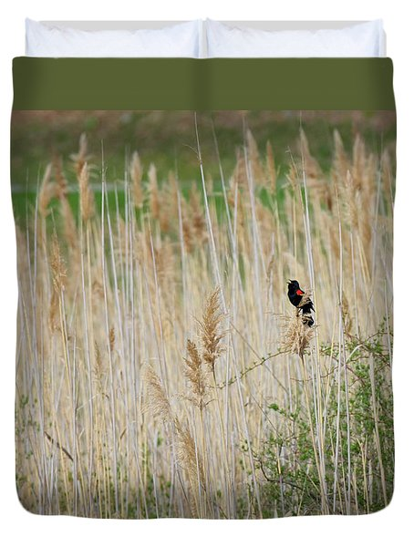 Duvet Cover featuring the photograph Sing For Spring by Bill Wakeley