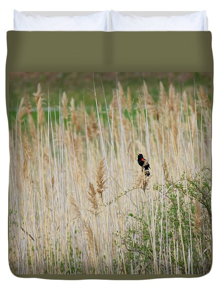Duvet Cover featuring the photograph Sing For Spring Square by Bill Wakeley