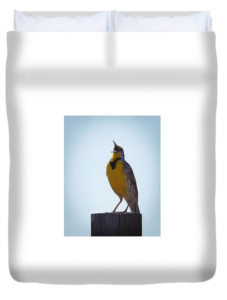 Sing Me A Song Duvet Cover by Ernie Echols