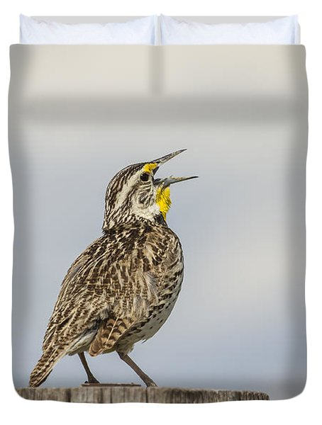 Singing A Song Duvet Cover