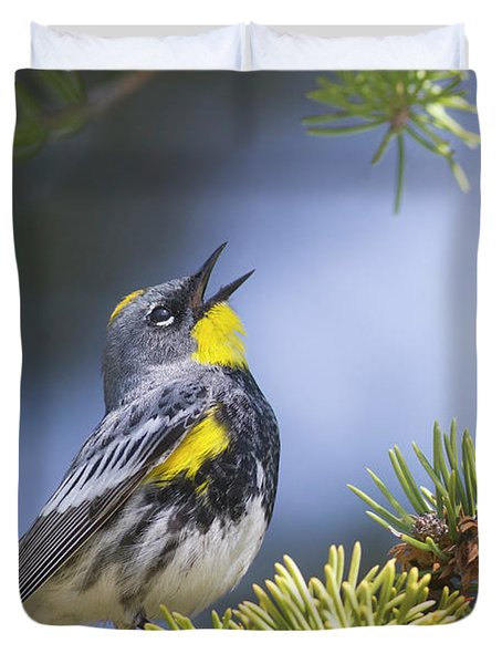 Singing Audubon's Warbler Duvet Cover