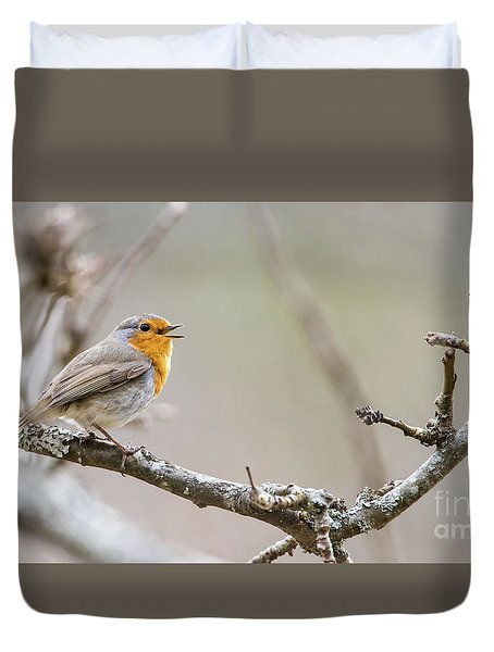 Singing Robin Duvet Cover by Torbjorn Swenelius