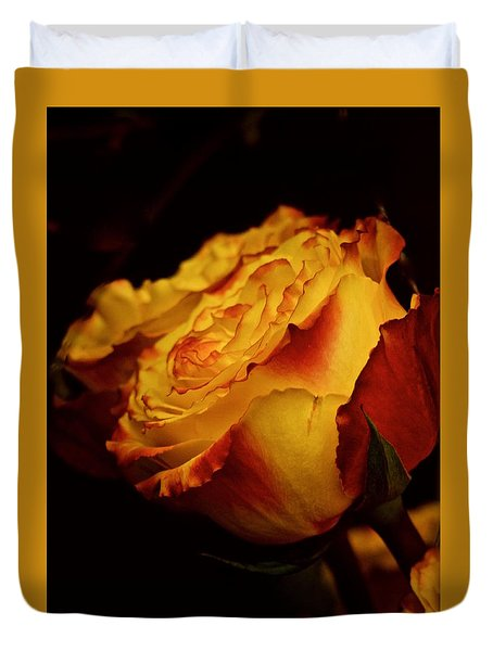 Duvet Cover featuring the photograph Single March Vintage Rose by Richard Cummings