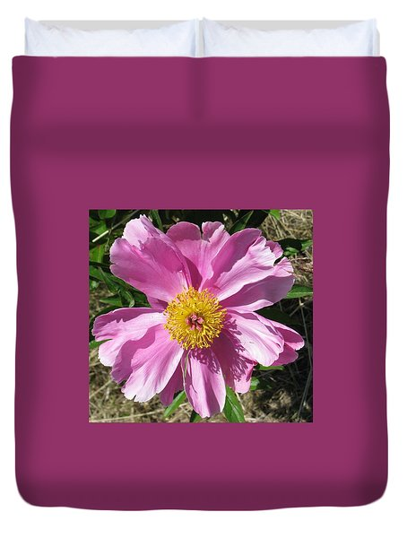 Single Pink Peony Duvet Cover