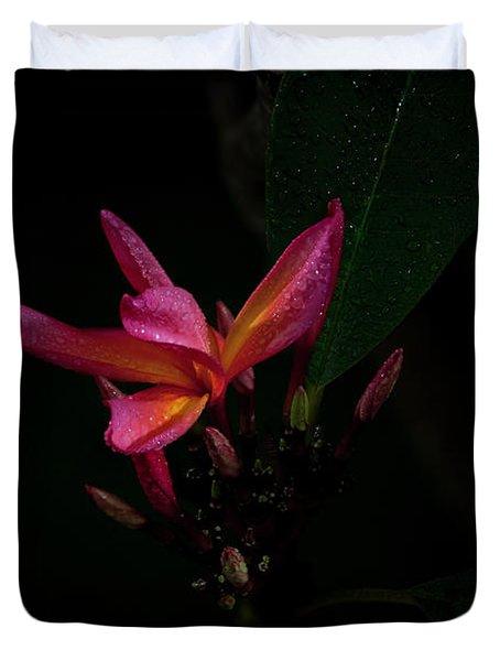 Single Red Plumeria Bloom Duvet Cover