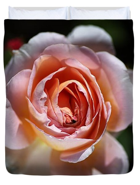Single Romantic Rose  Duvet Cover