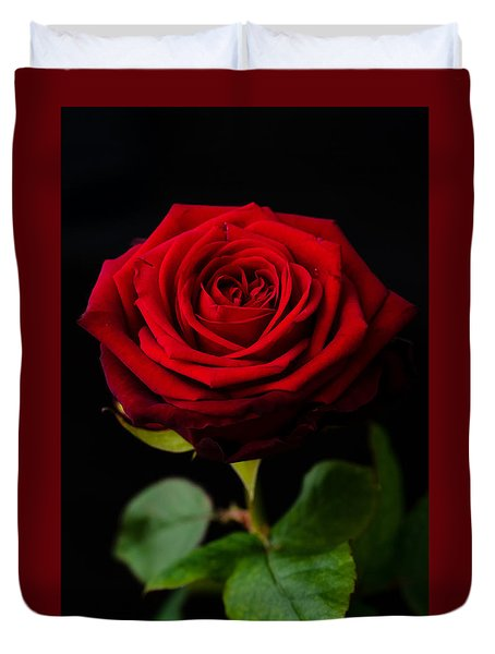 Single Rose Duvet Cover