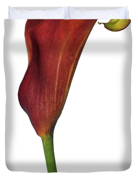 Single Rust Calla Lily Stem Duvet Cover