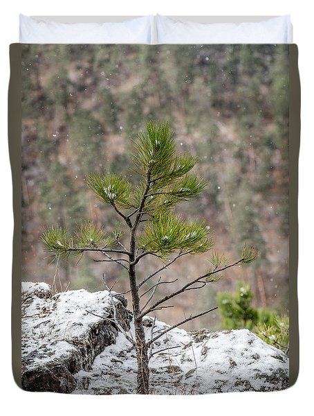 Single Snowy Pine Duvet Cover