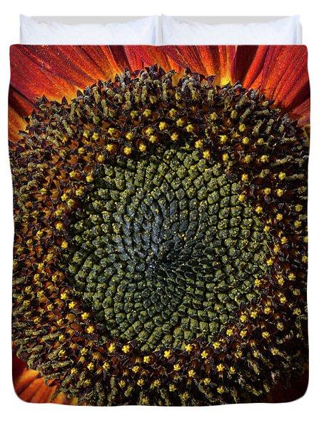 Single Sun Flower Duvet Cover