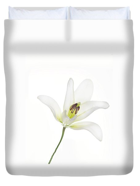 Single White Lily Duvet Cover by Rebecca Cozart