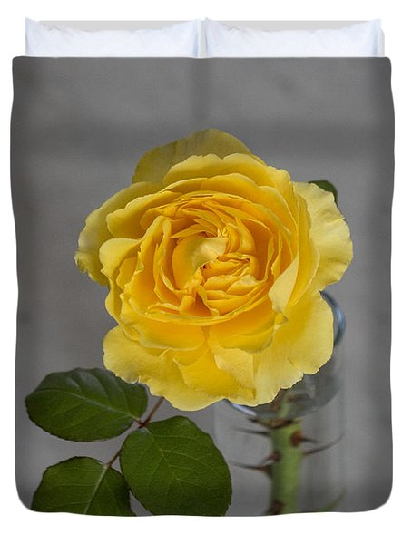 Single Yellow Rose With Thorns Duvet Cover