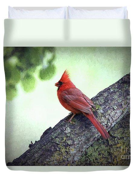 Sir Cardinal Duvet Cover