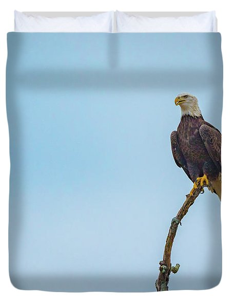 Sitting Patiently Duvet Cover by John Roberts