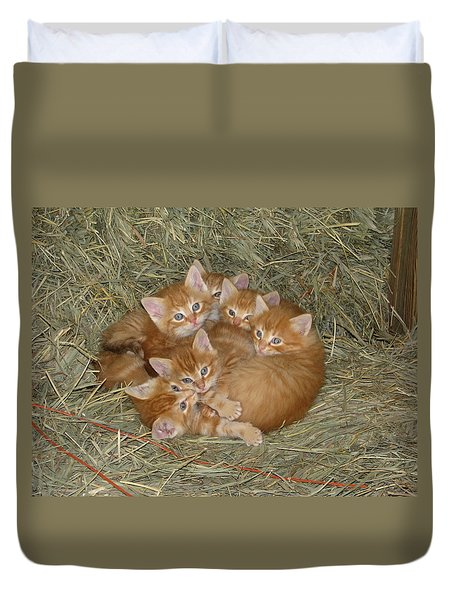 Six Kittens Duvet Cover