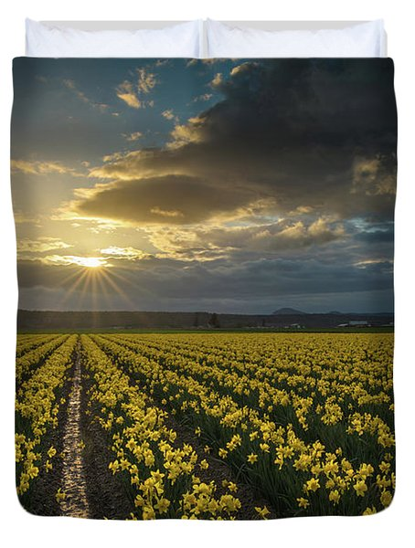 Duvet Cover featuring the photograph Skagit Daffodils Golden Sunstar Evening by Mike Reid