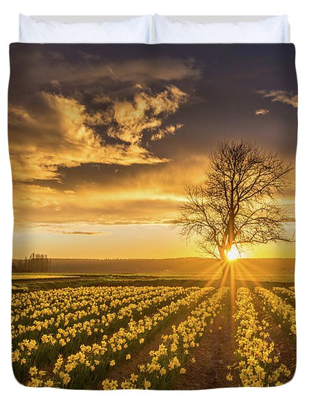 Duvet Cover featuring the photograph Skagit Valley Daffodils Sunset by Mike Reid