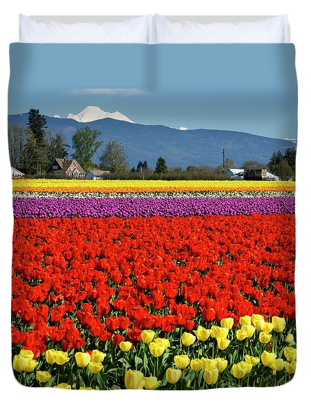 Skagit Valley Tulip Fields Duvet Cover