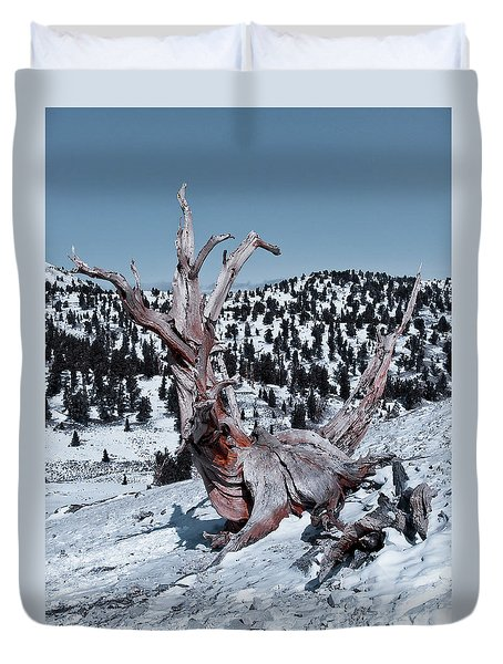 Duvet Cover featuring the photograph Skating Pine by Mae Wertz