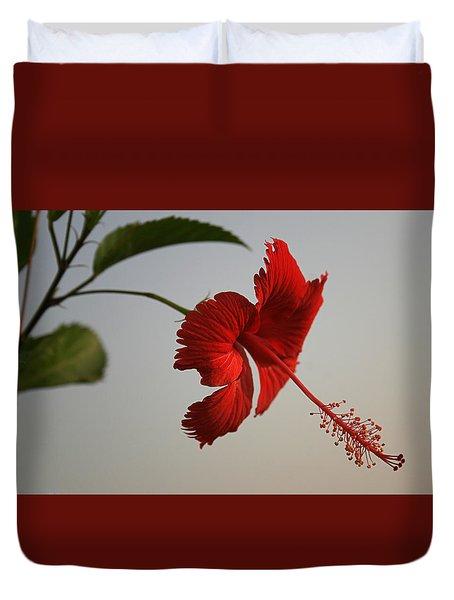 Skc 0450 Vibrant Hibiscus Duvet Cover