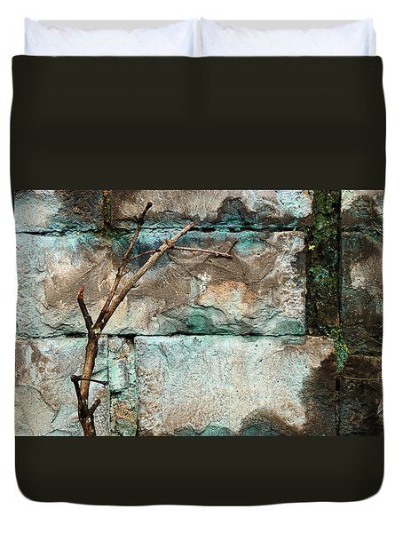 Skc 2510 Worn Out  Duvet Cover by Sunil Kapadia