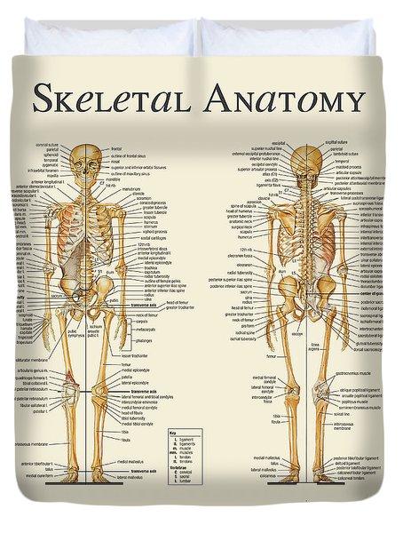 Skeletal Anatomy Duvet Cover