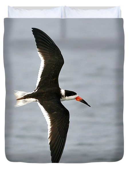 Skimmer In Flight Duvet Cover by Al Powell Photography USA