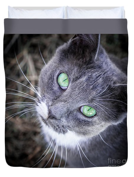 Skitty Green Eyes Duvet Cover by Cheryl McClure
