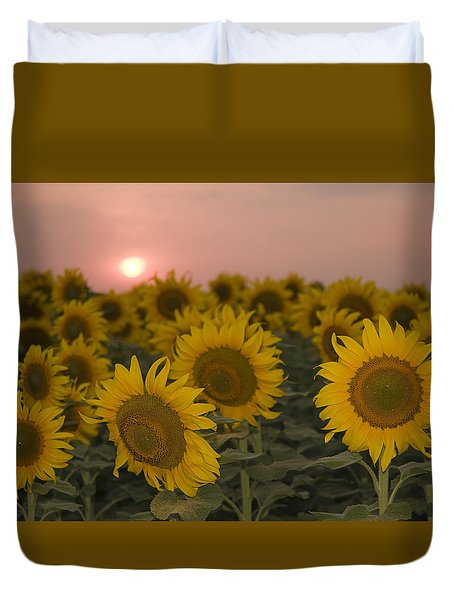 Skn 2178 The Sunflowers At Sunset  Duvet Cover by Sunil Kapadia