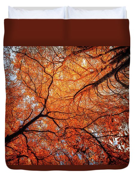 Sky Roots In Forest Red Duvet Cover by John Williams