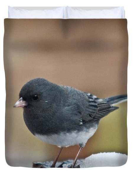 Slate Junco Feeding In Snow Duvet Cover