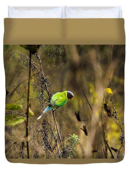 Slaty-headed Parakeet Duvet Cover by Ramabhadran Thirupattur
