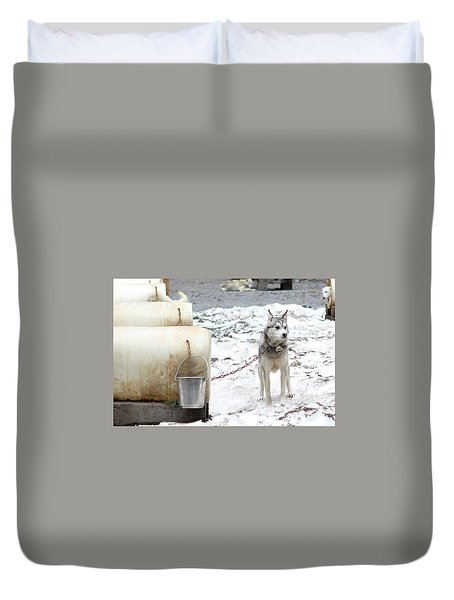 Duvet Cover featuring the photograph Grant by Brandy Little