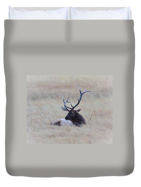 Sleeping Giant Duvet Cover by Steve McKinzie