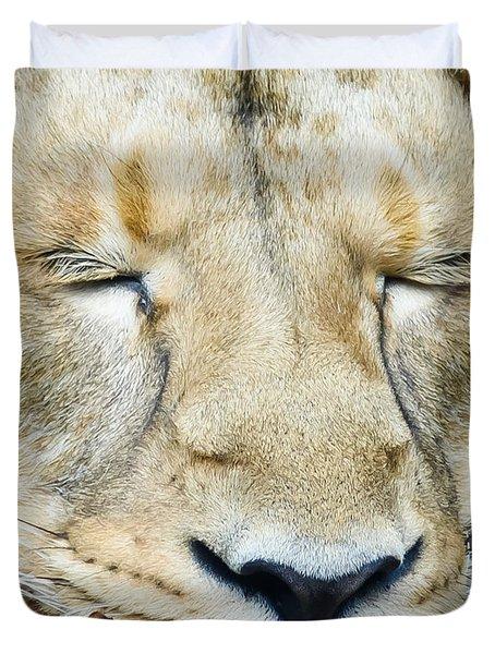 Sleeping Lion Duvet Cover