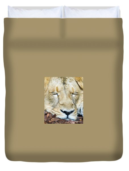 Sleeping Lion Duvet Cover