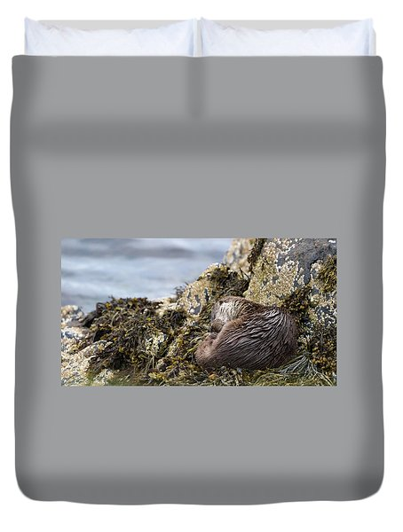 Sleeping Otter Duvet Cover