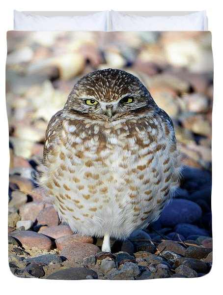 Sleepy Burrowing Owl Duvet Cover