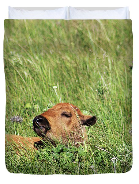 Duvet Cover featuring the photograph Sleepy Calf by Alyce Taylor