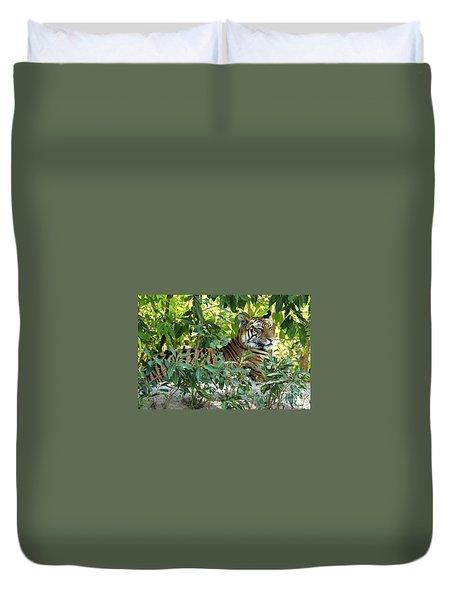 Sleepy Cat Duvet Cover by Pravine Chester
