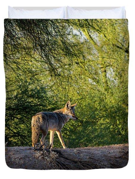 Sleepy Coyote Duvet Cover