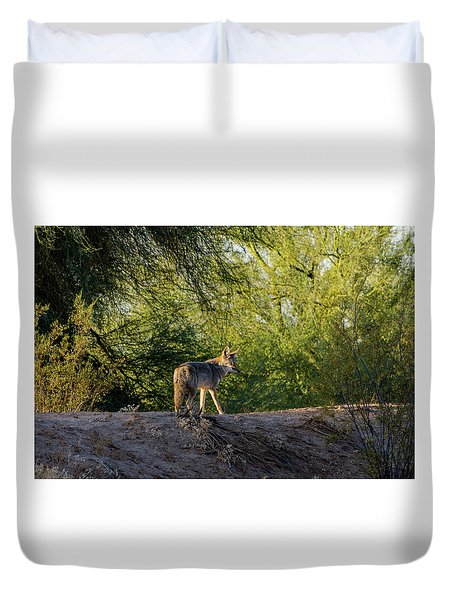 Sleepy Coyote Duvet Cover