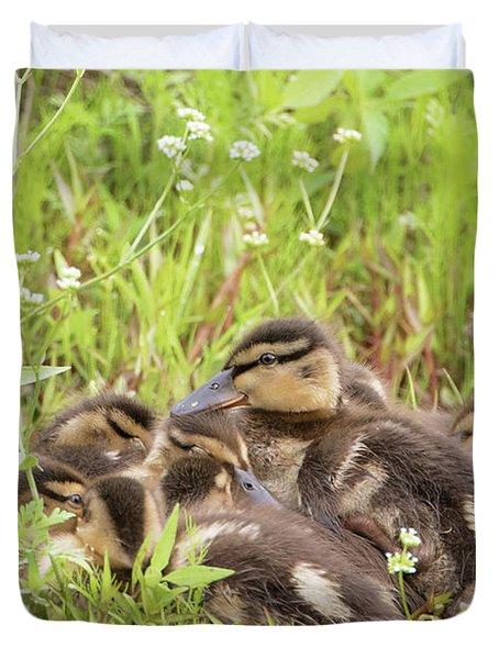 Sleepy Ducklings Duvet Cover